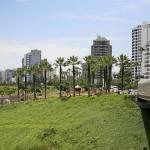 ParquedelAmorLima_AlexProimos_CC2.0