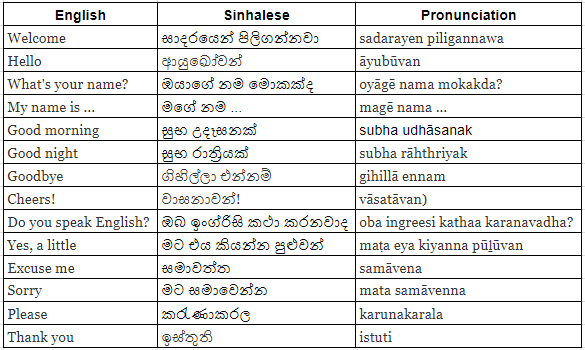 Learn Sinhala - Learn Languages - Grammar and Vocabulary