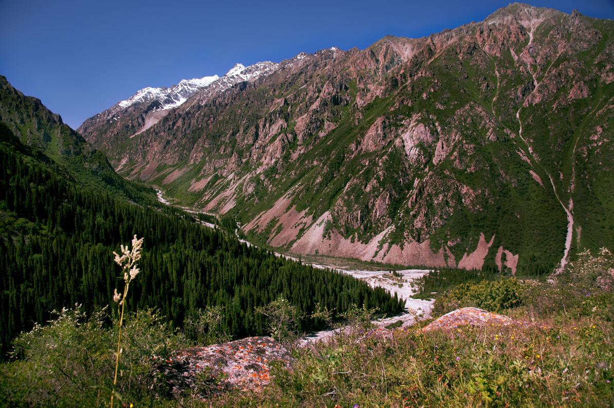 Learn Russia in Kyrgyzstan